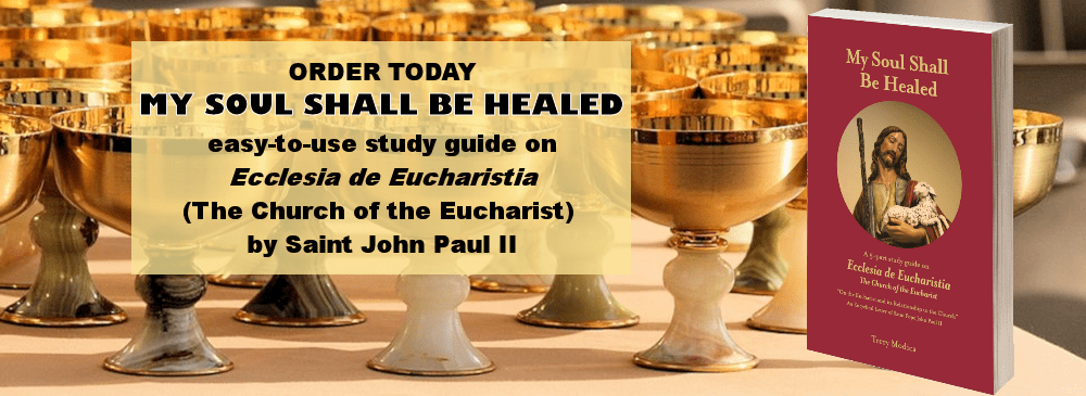 Order My Soul Shall Be Healed study guide from Catholic Digital Resources